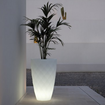 Maceta Vases Medium Iluminada